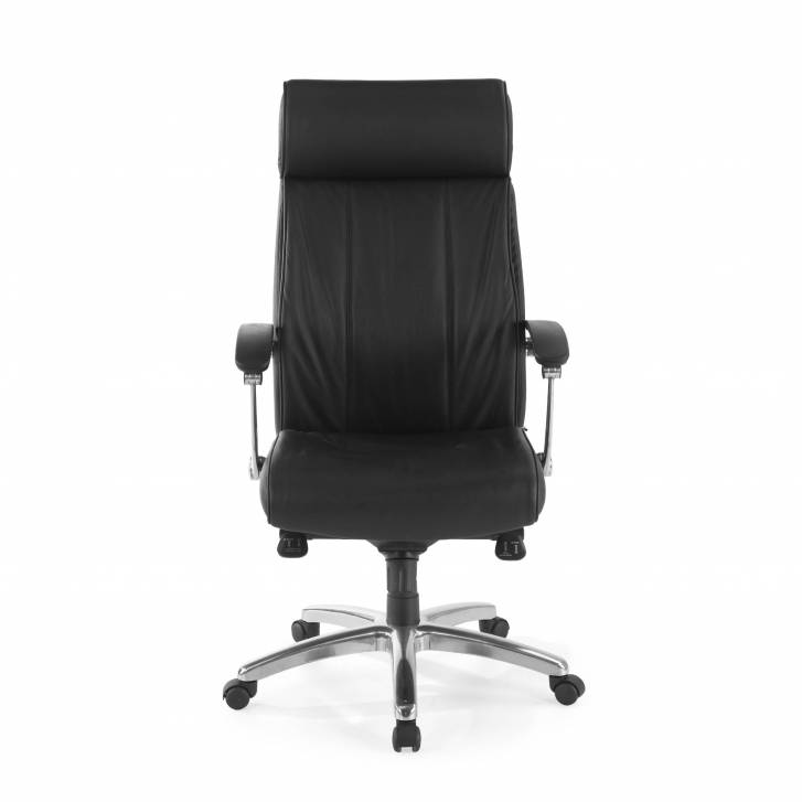 Convex Armchair Leather