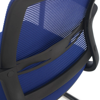 Diva Chair Cantilever Blue