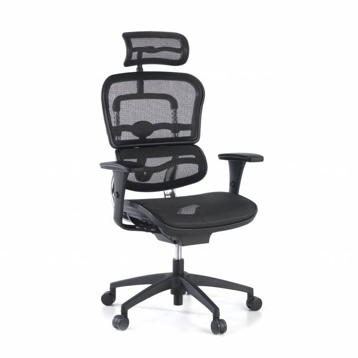 Ergoplus Chair Black