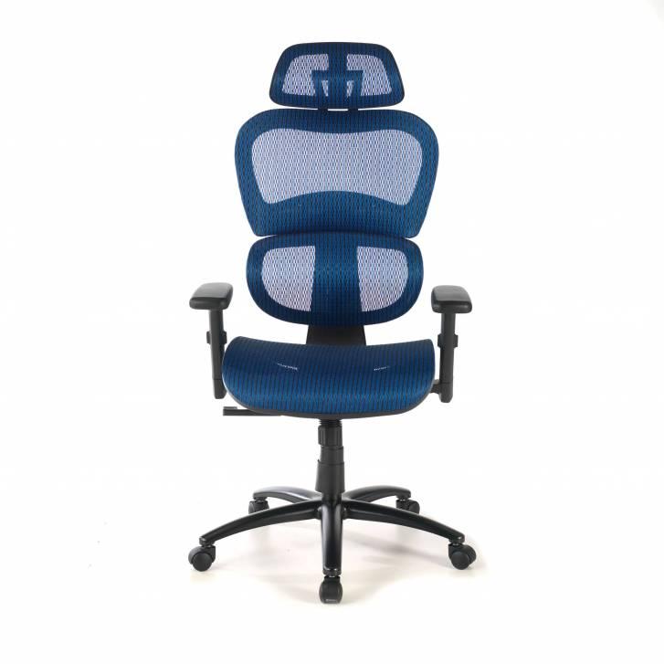 Ergocity Chair blue