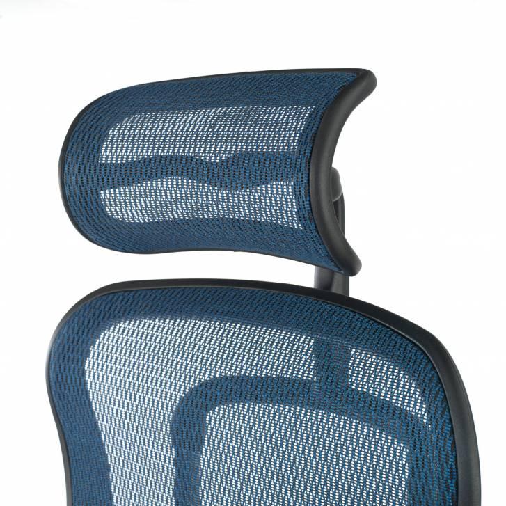 Ergoplus Chair Blue