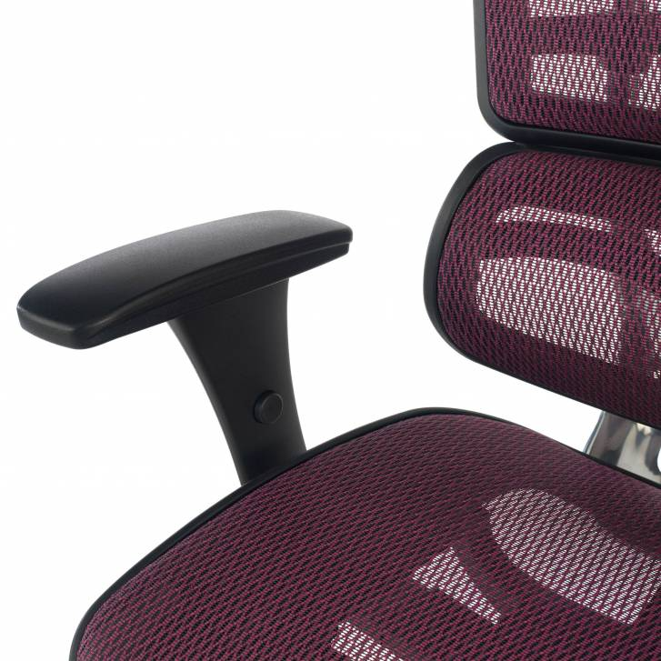 Ergoplus Chair red