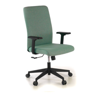 Blaze Chair green