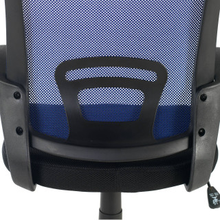 Canton Stuhl blau