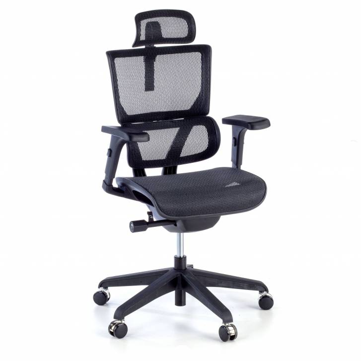 Vision ergonomic Chair With...