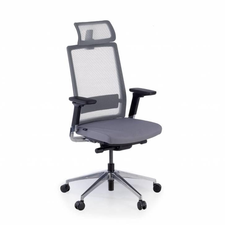 Physix chair with headrest...